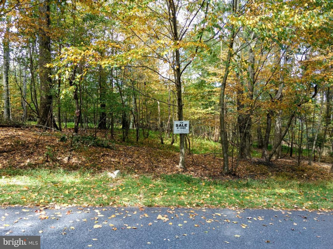 Land for Sale at Gardners, Pennsylvania 17324 United States