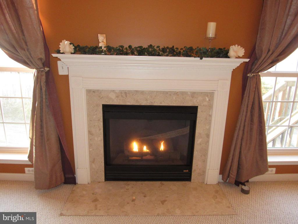 Gas Fireplace - 2763 MYRTLEWOOD DR, DUMFRIES