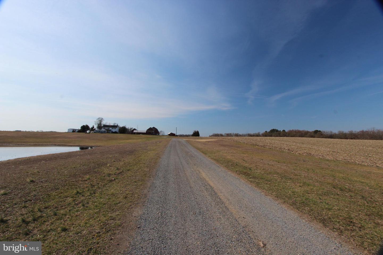 土地,用地 为 销售 在 Middletown, 特拉华州 19709 美国