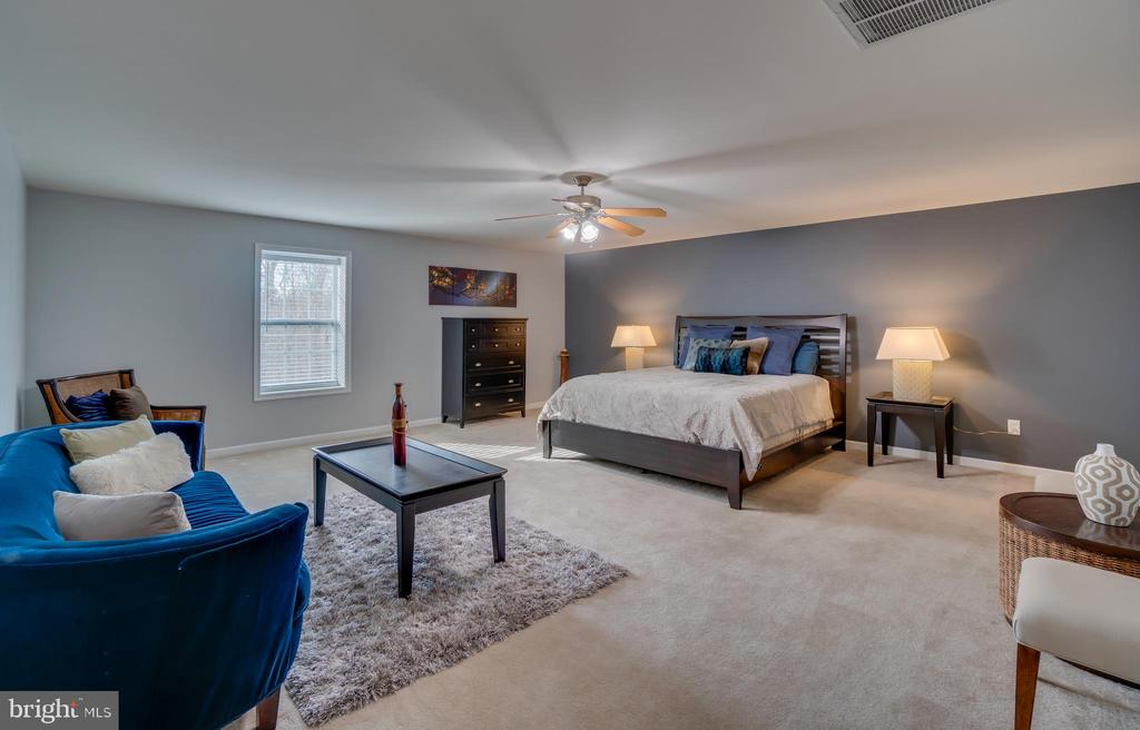 HUGE Basement Bedroom! - 81 SENTINEL RIDGE LN, STAFFORD