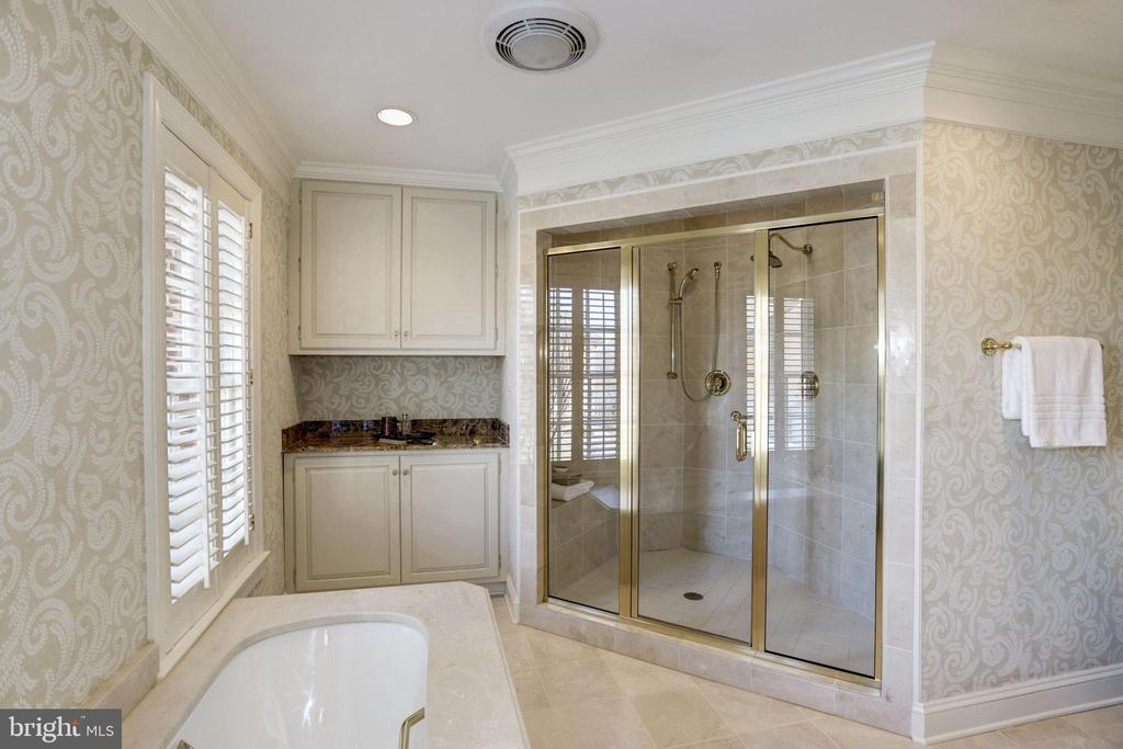 Oversized shower with multiple heads - 3818 N RANDOLPH CT, ARLINGTON