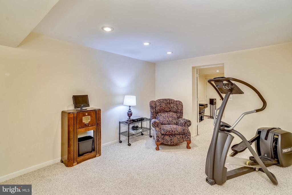 One of 2 additional finished rooms in basement - 24624 RIDGE RD, DAMASCUS