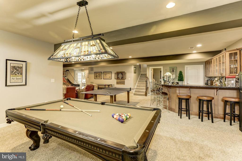 Basement - 26858 WINTER WREN CT, CHANTILLY