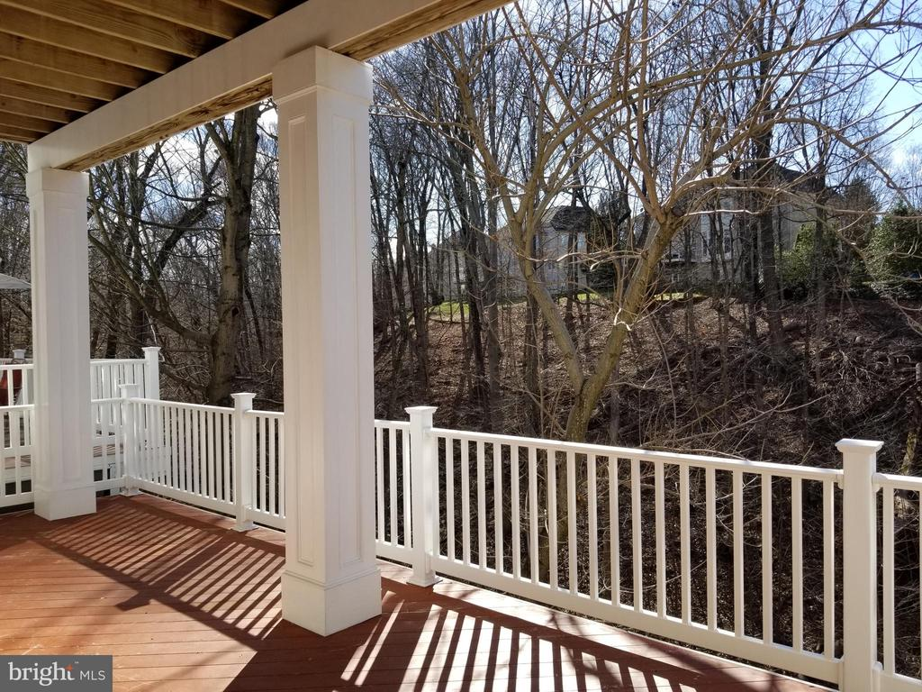 View from Deck - Main Level - 18213 CYPRESS POINT TER, LEESBURG