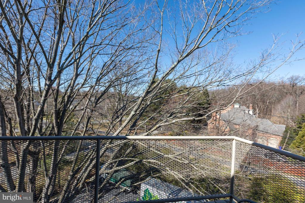 Balcony looking at cherry trees of Kenwood! - 5100 DORSET AVE #505, CHEVY CHASE