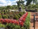 Community Fountain - 10869 SYMPHONY PARK DR, NORTH BETHESDA