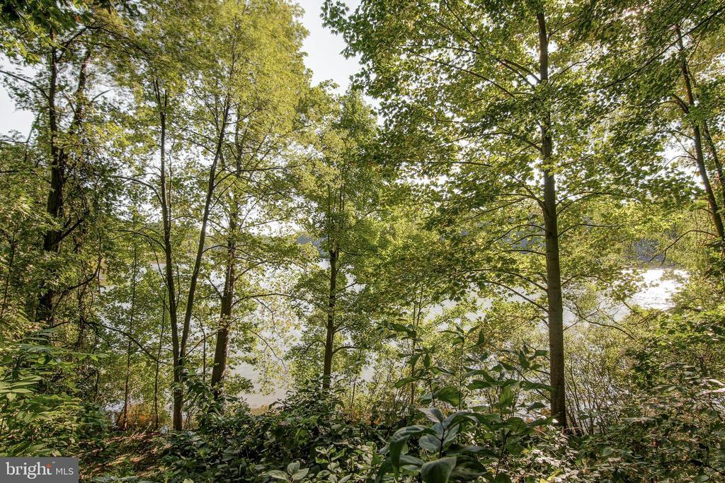 Summer View - 15757 WIDEWATER DR, DUMFRIES