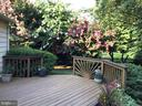 Professional landscaping - 914 ROLLING HOLLY DR, GREAT FALLS