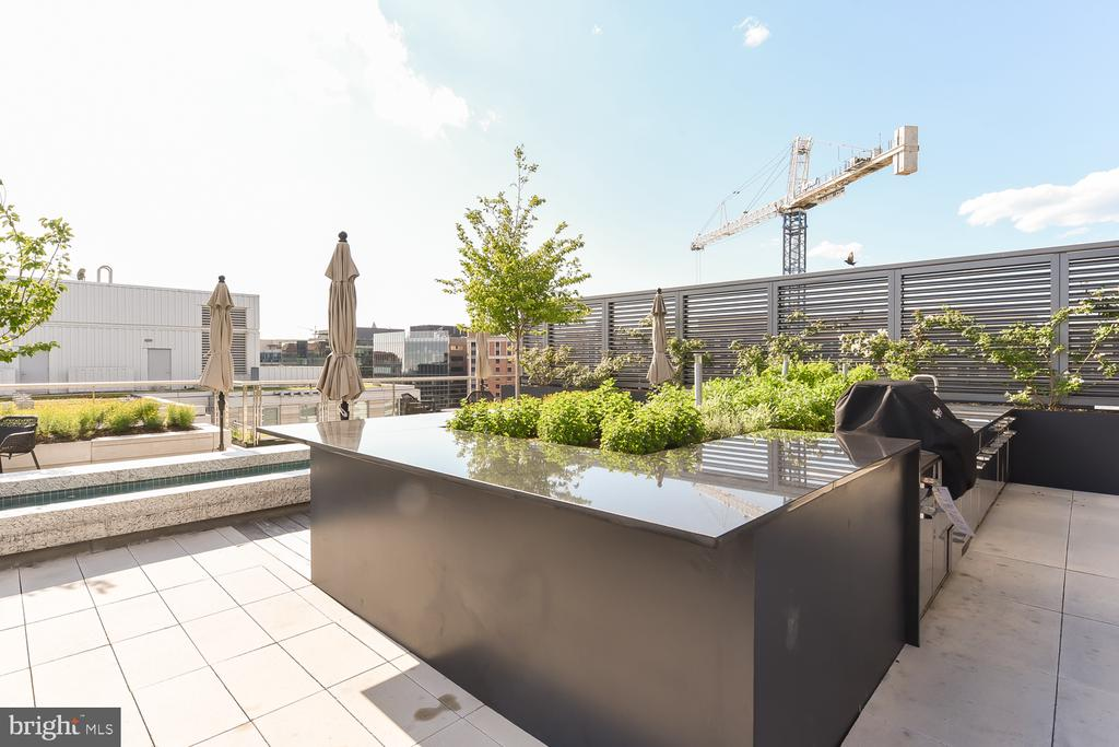 More gas grills with herb garden for residents use - 925 H ST NW #707, WASHINGTON