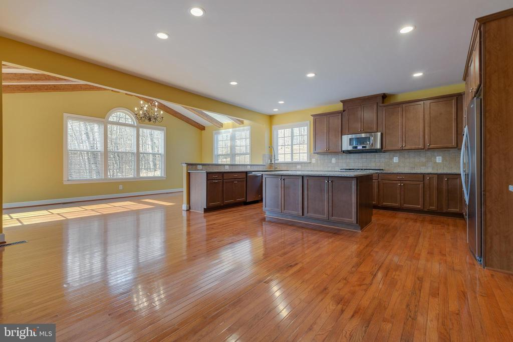 Plenty of Space to Entertain - 15879 FROST LEAF LN, LEESBURG
