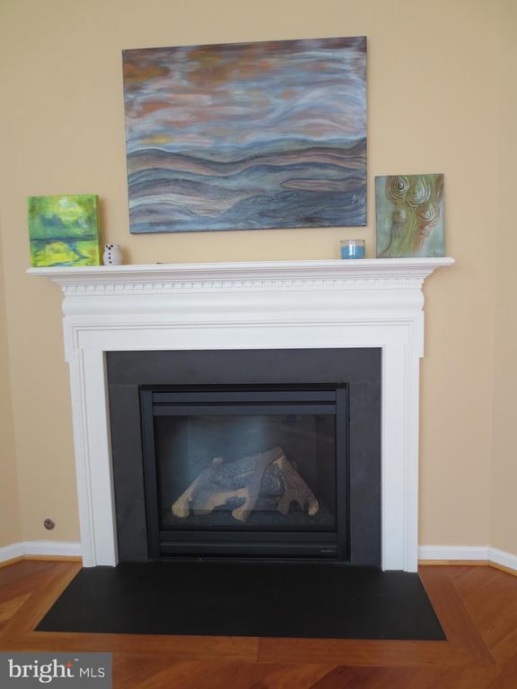 Gas Fireplace - 10623 LEGACY LN, FAIRFAX