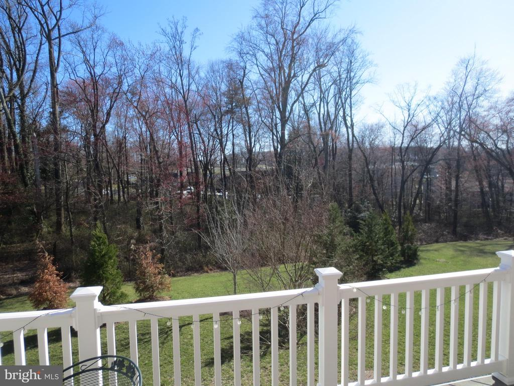 View from balcony - 10623 LEGACY LN, FAIRFAX