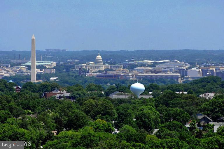 View From Roof Top - 888 N QUINCY ST #1309, ARLINGTON