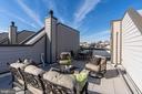 Roof Terrace - 505 ORONOCO ST, ALEXANDRIA