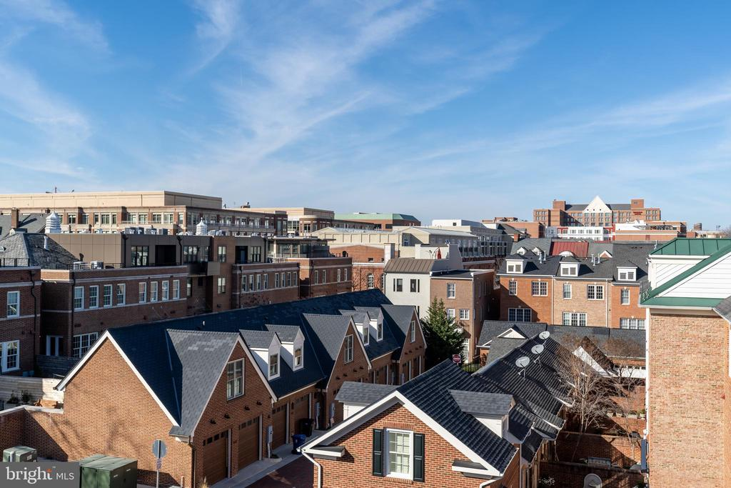 Views from roof terrace - 505 ORONOCO ST, ALEXANDRIA