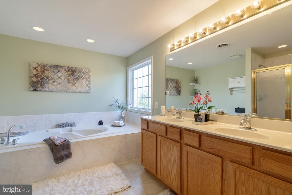 Master bath with dual vanity and Lg Tub - 260 SPOTTED TAVERN RD, FREDERICKSBURG