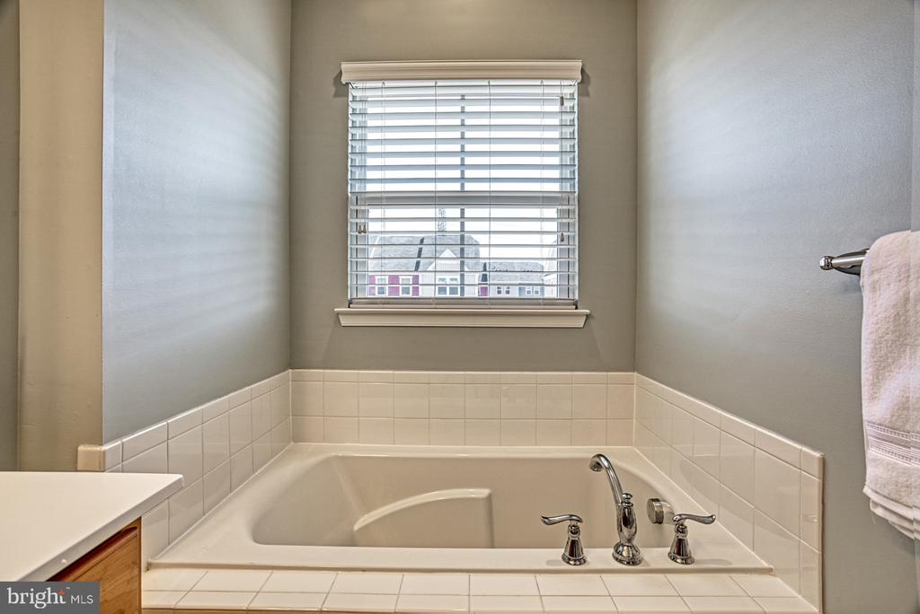Beautiful Soaking Tub in the Master Bathroom - 25056 MCCULLEY TER, ALDIE