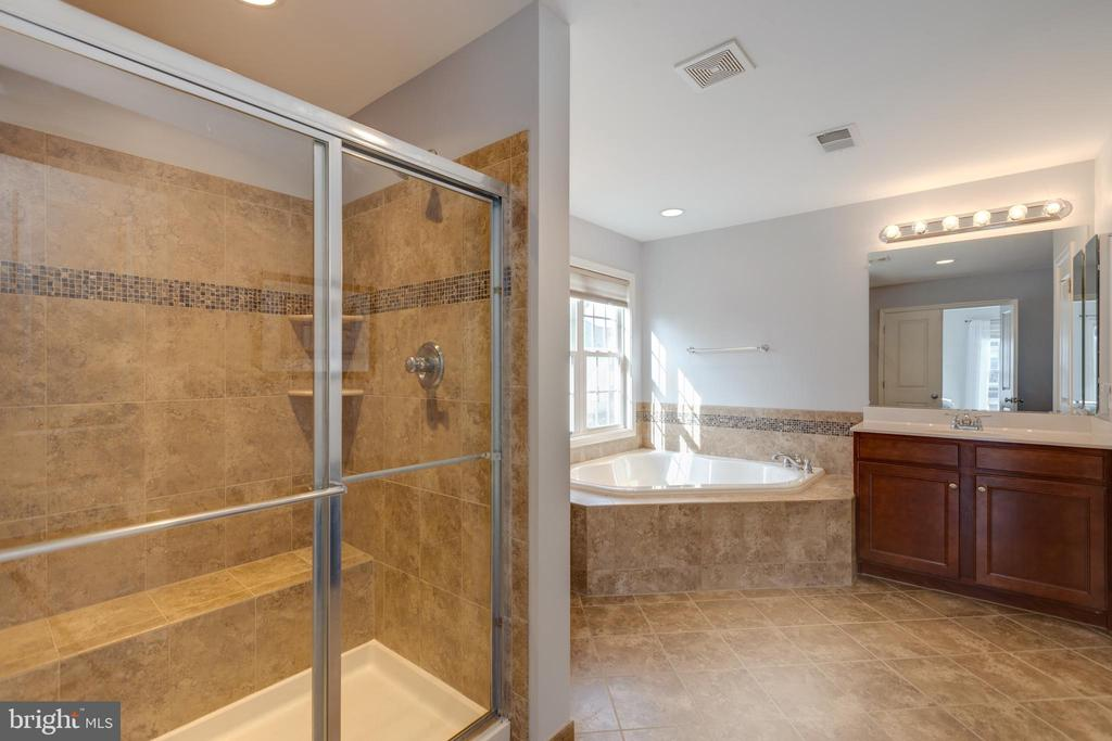 Master Bathroom - 41528 WARE CT, ALDIE