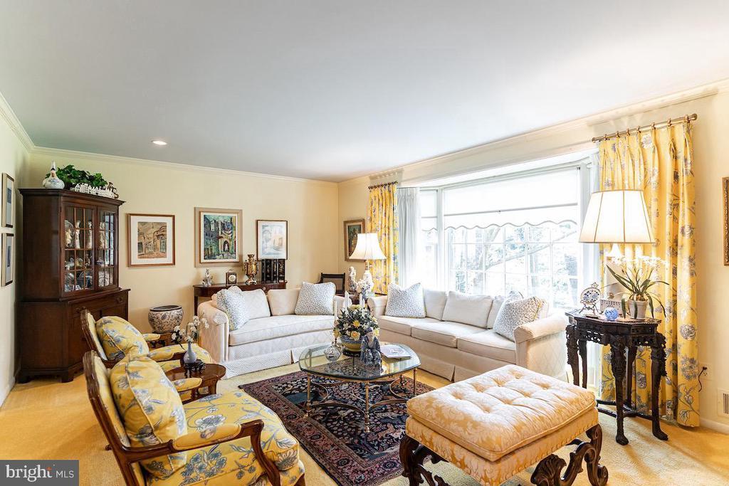 Living Room carpeting has hardwood floors beneath. - 11905 VIEWCREST TER, SILVER SPRING