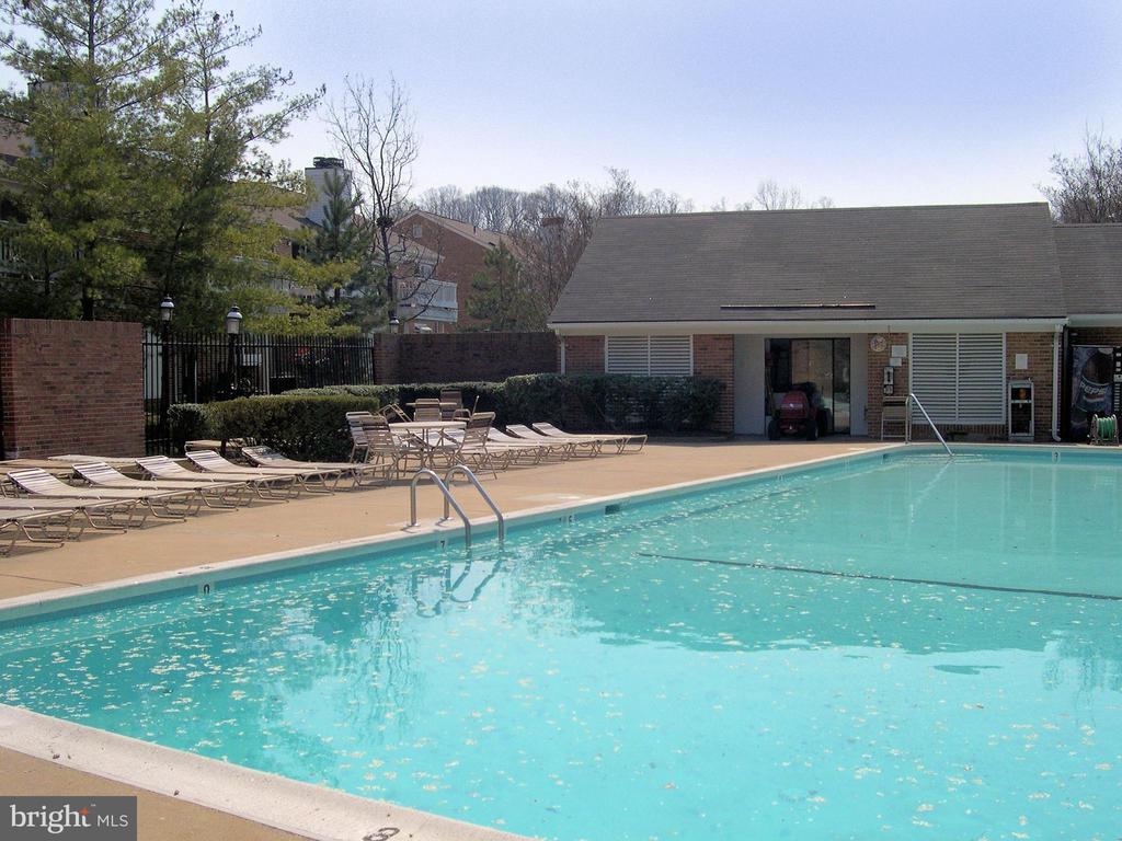 Wonderful swimming pool with large tanning area - 2550-B S ARLINGTON MILL DR #B, ARLINGTON