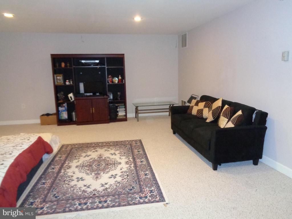 Ample sized Recreation Room - 12509 HAWKS NEST LN, GERMANTOWN