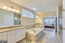 Master Bath w/ whirlpool tub & frameless shower - 41178 CHATHAM GREEN CIR, ALDIE