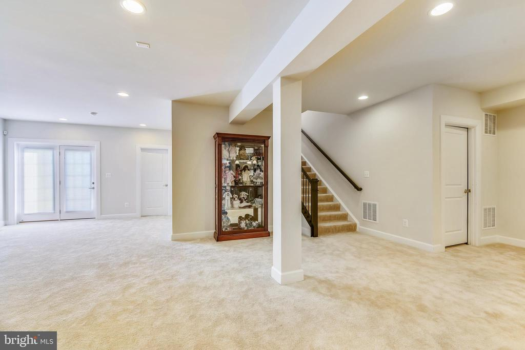 Huge finished basement - 41178 CHATHAM GREEN CIR, ALDIE