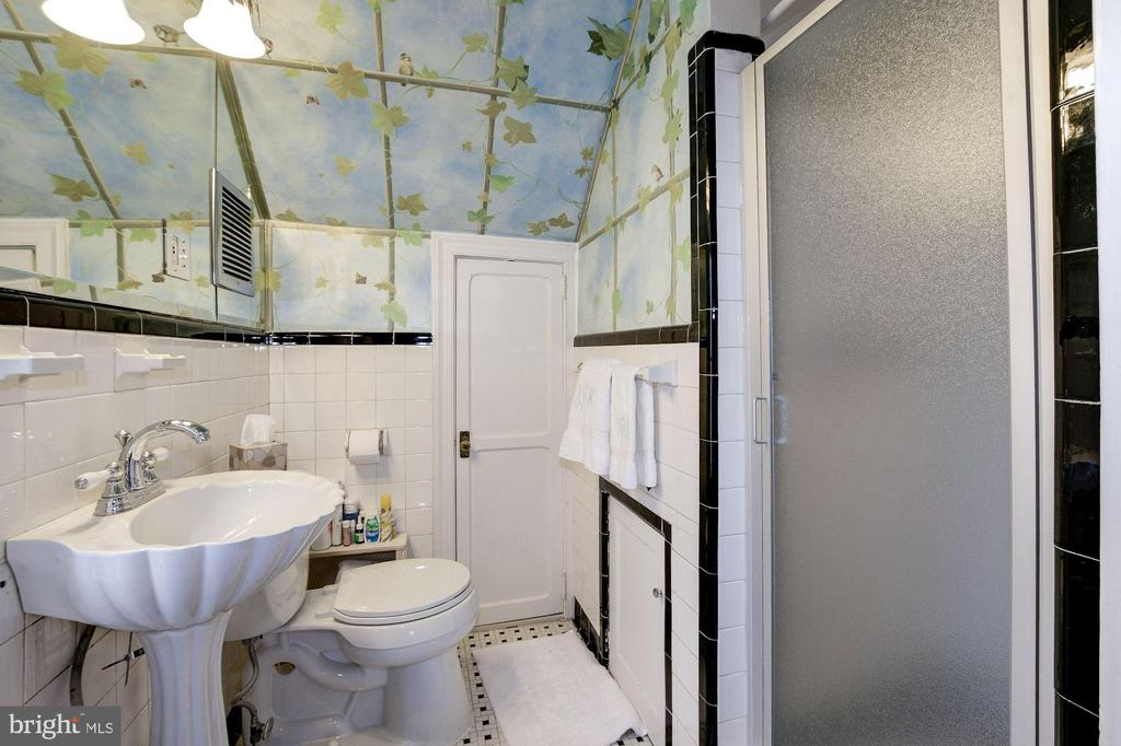 En suite Bath  with lovely hand painted murals - 17 MAGNOLIA PKWY, CHEVY CHASE