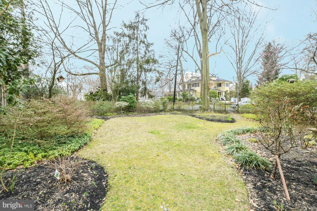 Lovely yard w/mature landscaping+ large azaleas - 17 MAGNOLIA PKWY, CHEVY CHASE