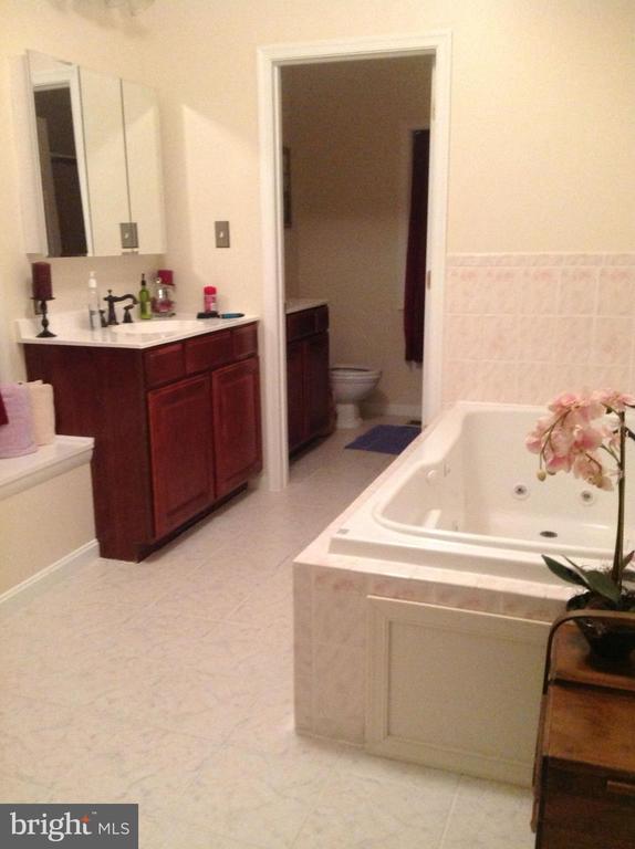 Master bathroom suite - 12090 MOUNTAIN WATCH CT, LOVETTSVILLE
