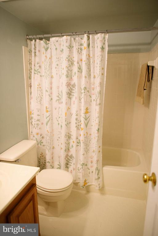 Full Bath in Basement - 17281 PICKWICK DR, PURCELLVILLE