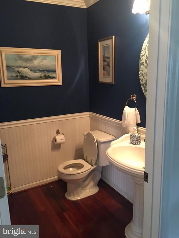 Half bathroom main level - 12090 MOUNTAIN WATCH CT, LOVETTSVILLE