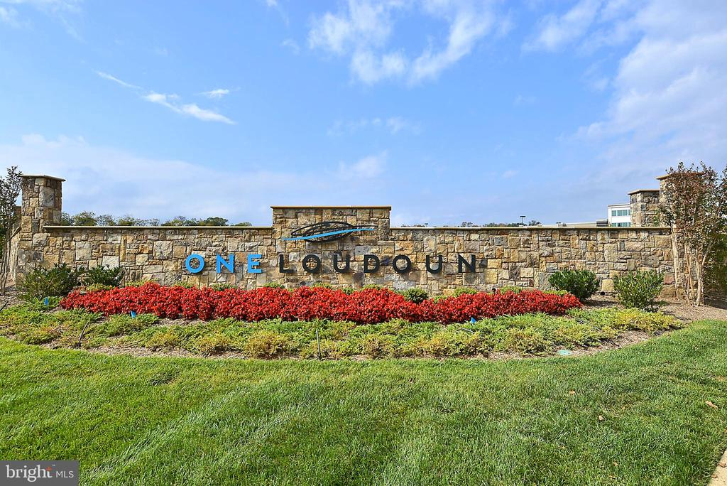 OneLoudoun - Shopping, Restaurants, and More! - 20495 MILBRIDGE TER, ASHBURN