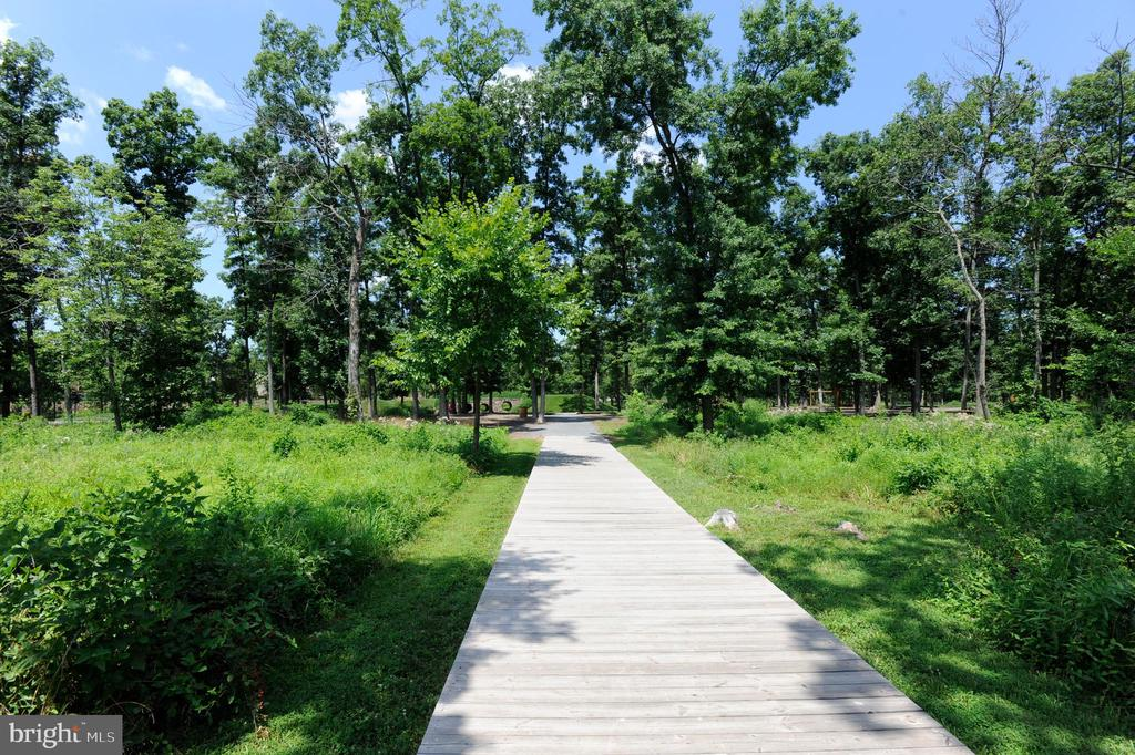 Nearby Area Biking and Walking Trails - 20495 MILBRIDGE TER, ASHBURN