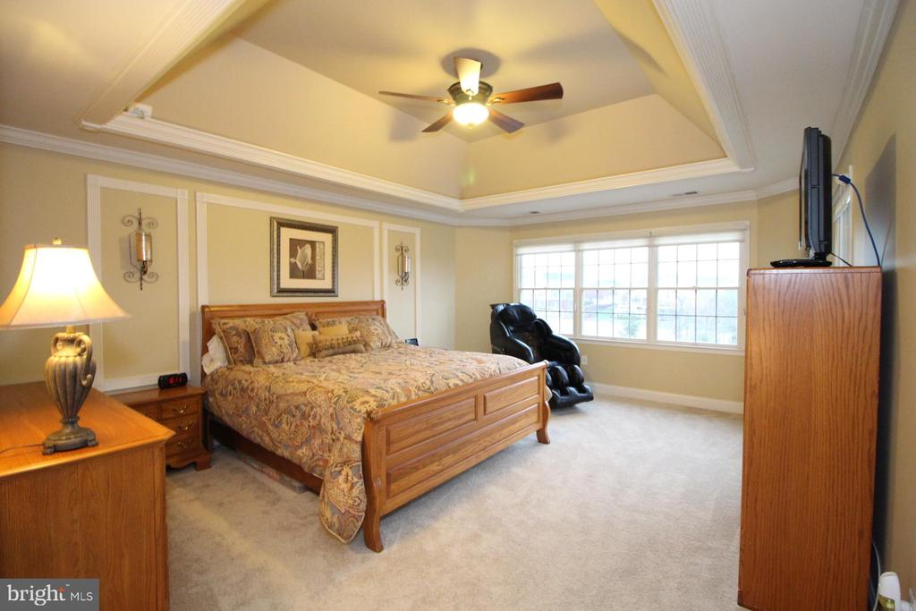 Master Bedroom - 19876 BETHPAGE CT, ASHBURN