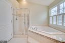 Master Bath - 20038 NORTHVILLE HILLS TER, ASHBURN