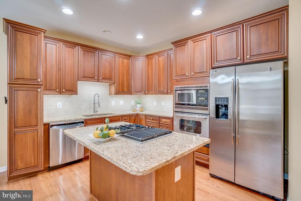 Kitchen with stainless appliances - 20038 NORTHVILLE HILLS TER, ASHBURN