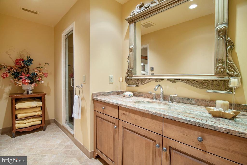 Lower Full Bath, Steam Rm Seats 6,& Walk-in Shower - 896 ALVERMAR RIDGE DR, MCLEAN