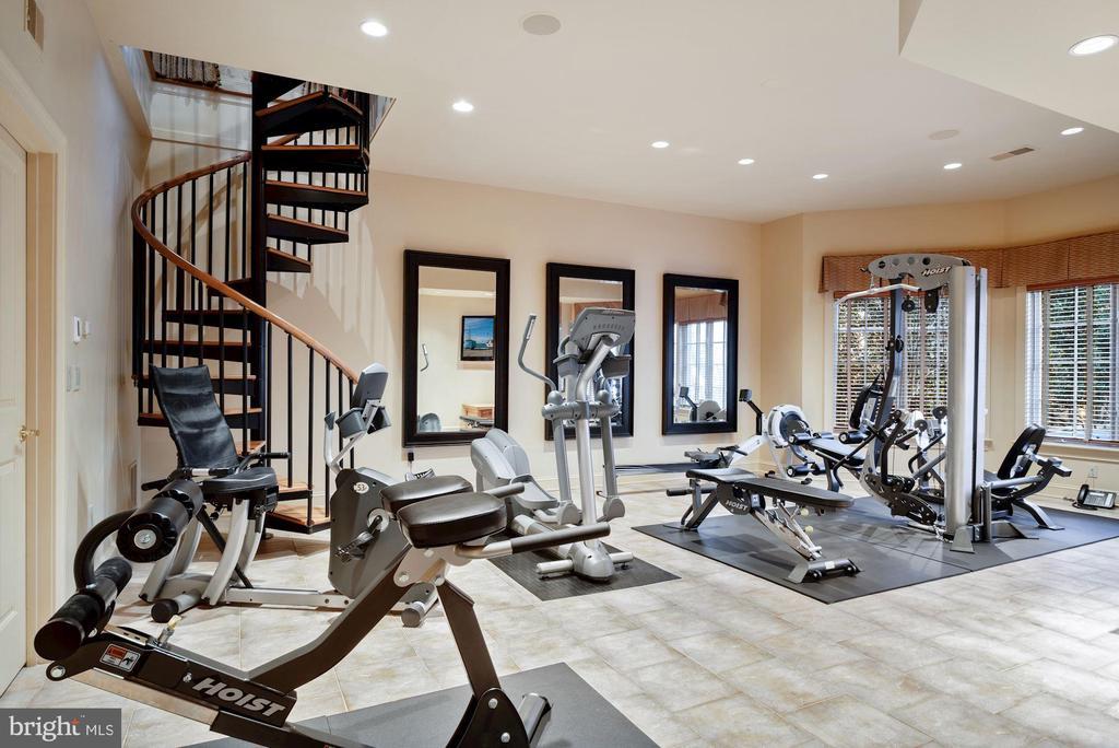 Exercise Rm, Full Daylight & Spiral Stair - 896 ALVERMAR RIDGE DR, MCLEAN