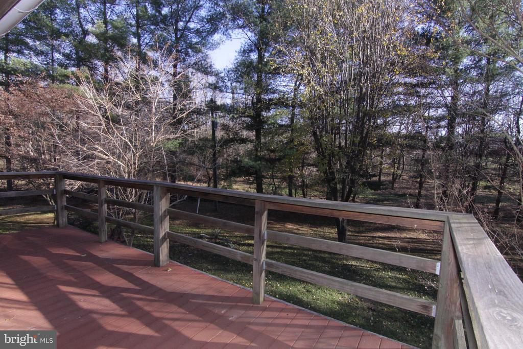 another beautiful view - 35820 CHARLES TOWN PIKE, HILLSBORO