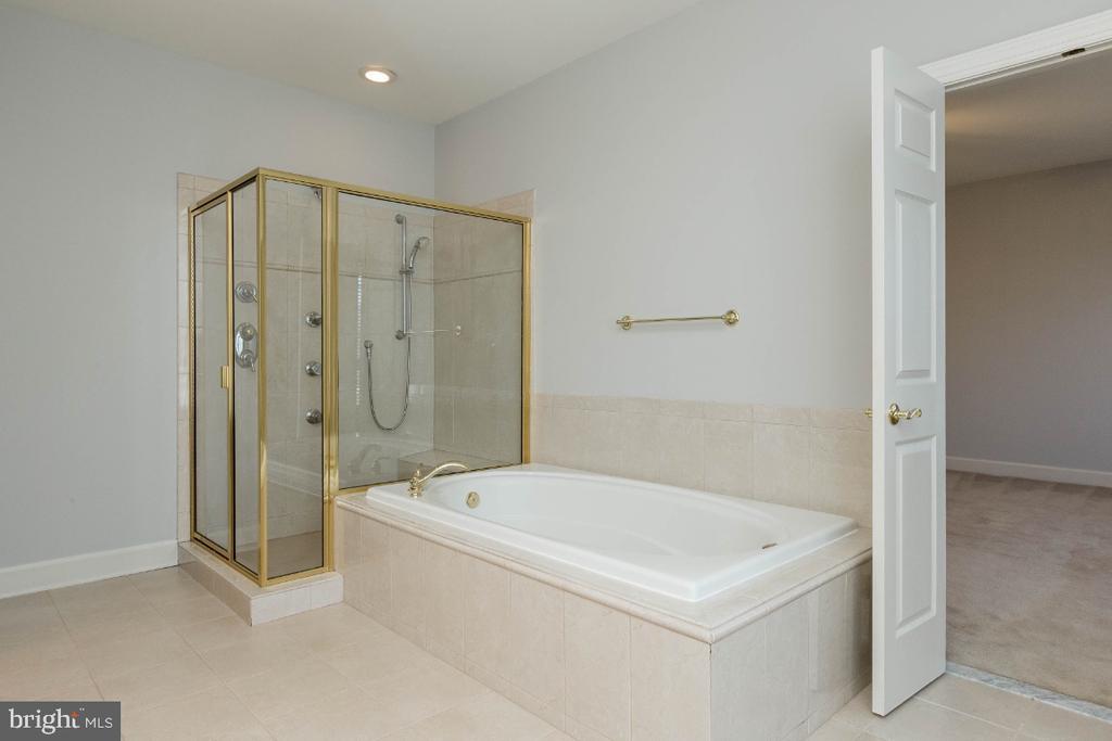 Master soaking tub and shower - 43476 CASTLE HARBOUR TER, LEESBURG