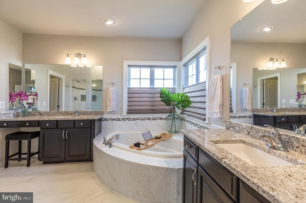 Soaking tub - 14515 FALCONAIRE PL, LEESBURG