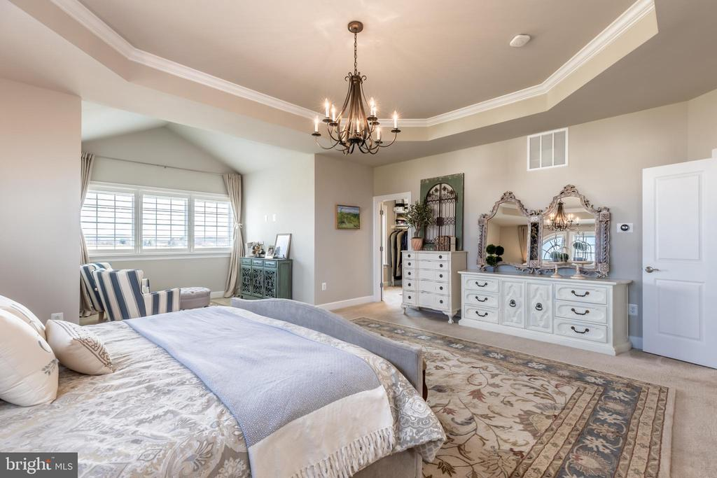 Master bedroom with a large master closet. - 14515 FALCONAIRE PL, LEESBURG
