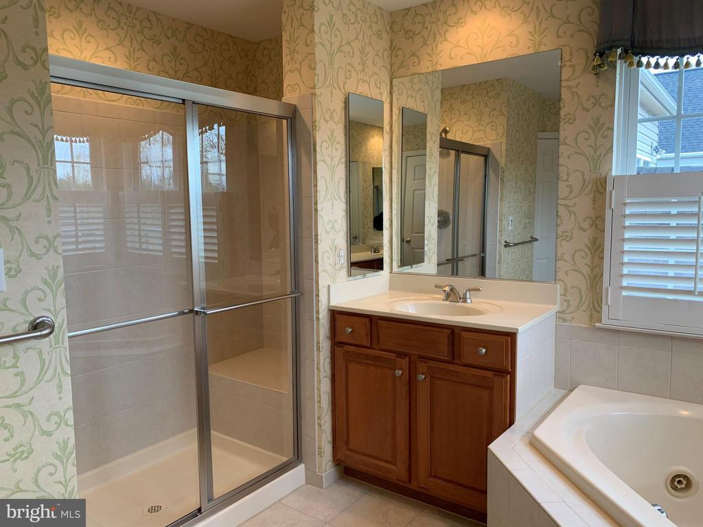 Master Bath - 43292 CLARECASTLE DR, CHANTILLY