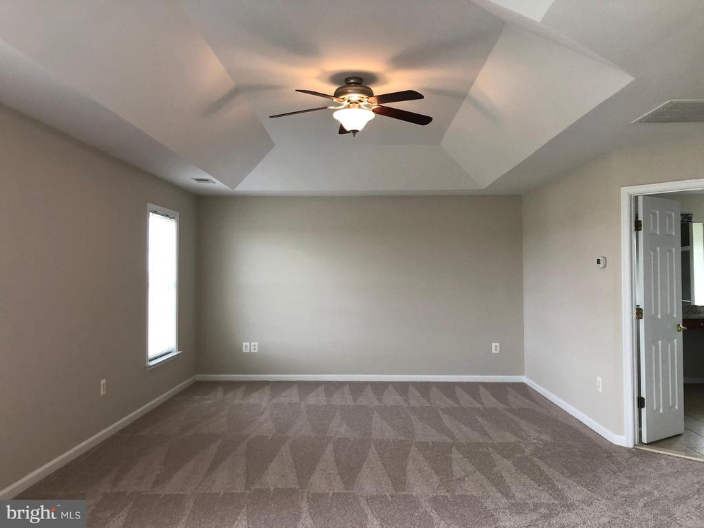 Master Bedroom - 14042 BLUE VIEW CT, LEESBURG
