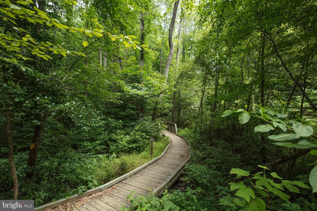 Gorgeous nature trails - 17109 GULLWING DR, DUMFRIES