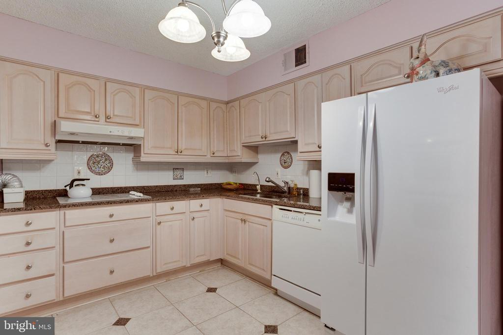 Kitchen - 1800 OLD MEADOW RD #1106, MCLEAN