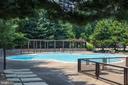 Pool - 1800 OLD MEADOW RD #1106, MCLEAN