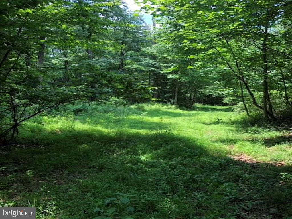 Đất đai vì Bán tại Dauphin, Pennsylvania 17018 Hoa Kỳ