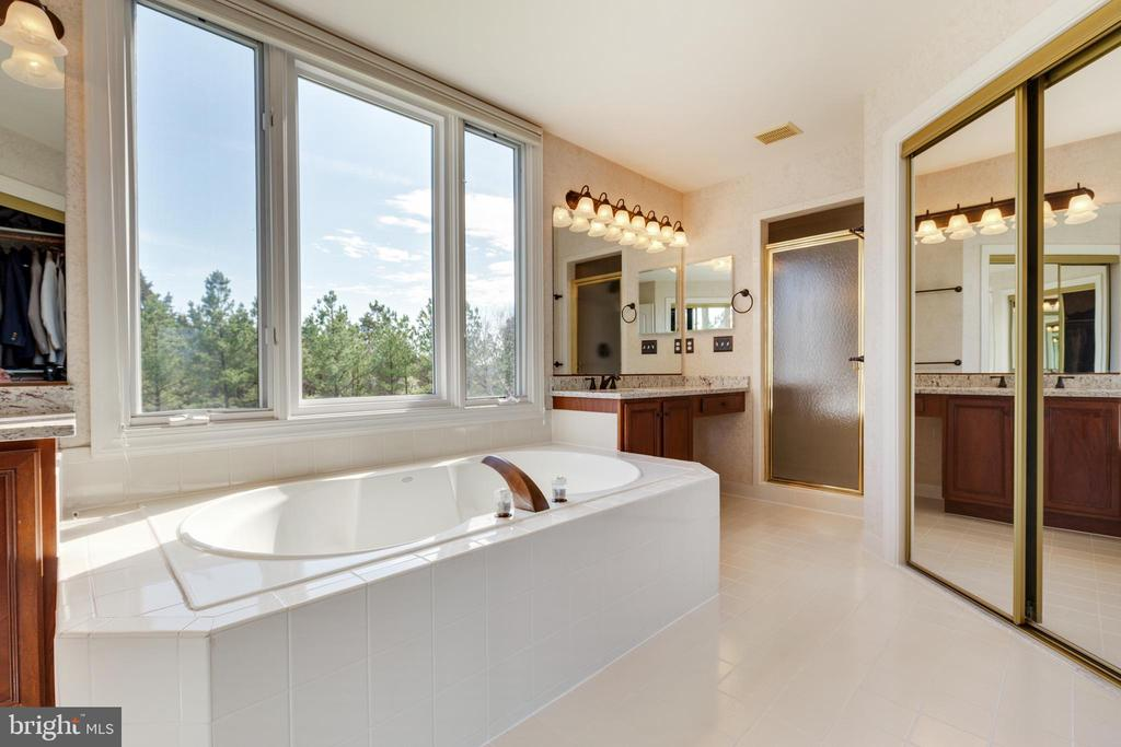 Tub, Shower and 2 Walk-in Closets - 21946 HYDE PARK DR, ASHBURN